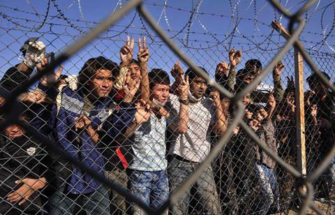 Το αντισυνταγματικό δεν είναι στο δικαίωμα της ασφάλισης των λαθρομεταναστών, αλλά στο δικαίωμά τους να ασφαλίζονται στο ΙΚΑ. Γιατί;