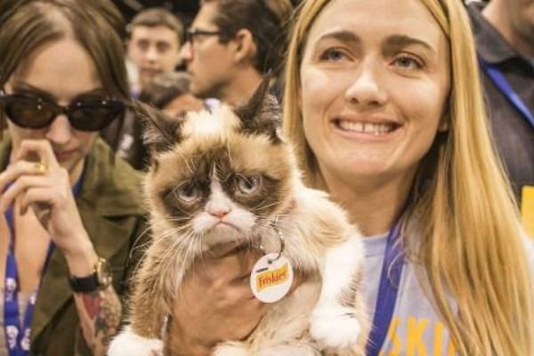 Πώς μία σερβιτόρα κέρδισε πάνω από 100 εκατομμύρια χάρη στη γάτα της